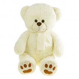 Albert, medvedík