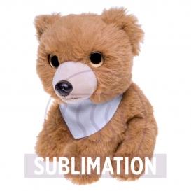 Shaggy, medvedík